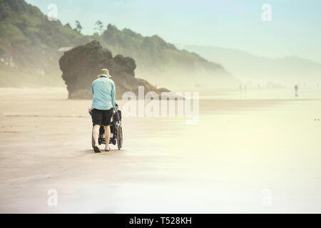 Father pushing disabled young child in wheelchair along sandy beach by the ocean on foggy misty day, walking away from the camera, back view - Stock Photo