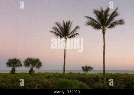 USA, Florida, Sanibel Island, palm trees seen through a screened window with the Gulf of Mexico in the background - Stock Photo