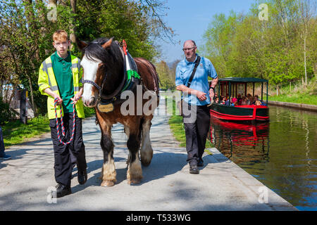 Horse drawn canal boat trip at Llangollen Wharf,Wales, UK. Horse pulling a barge full of people enjoying a narrow boat trip on a sunny day. - Stock Photo