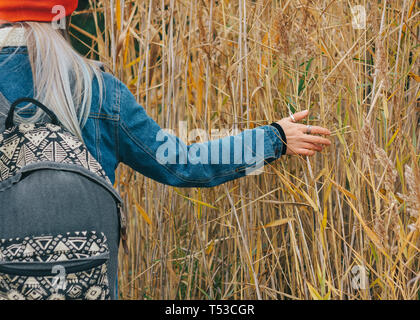 Walk in nature A girl in a red cap with a backpack is walking among the dry high grass in autumn - Stock Photo