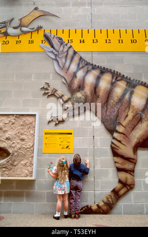 Tampa Florida Museum of Science & Industry hands on scientific exploration young visitors dinosaur exhibit - Stock Photo