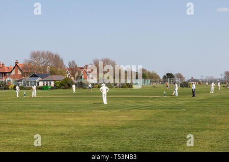Village cricket match taking place in the spring sun - Stock Photo