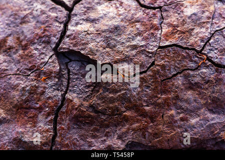 The surface of the broken metal rusts naturally. - Stock Photo