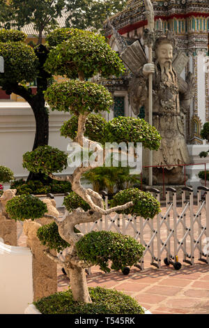 Thailand, Bangkok, Wat Pho, Sanamchai Road entrance, twisted topiary bush - Stock Photo