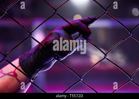 Rear view of a referee holding a black-gloved hand on a metal grid in an octagonal scene. Male judge in mixed martial arts at MMA tournaments. A conce - Stock Photo