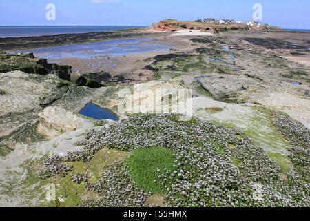 View across to Hilbre Island from Middle Eye, Dee Estuary, Wirral, UK - Stock Photo