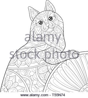 a cute cat with ornaments image for relaxing activitycoloring bookpage for adultszen art style illustration for printposter design t55n74