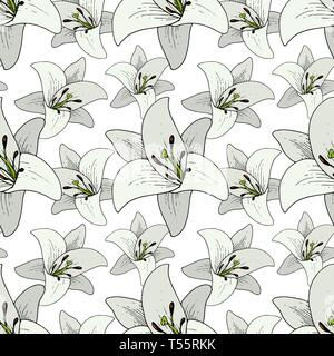 Vector Lily Floral botanical flower. Black and white engraved ink art. Seamless background pattern. - Stock Photo