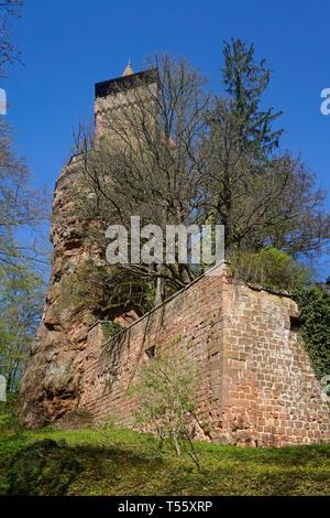 Burg Berwartstein, mittelalterliche Felsenburg und einzige bewohnte Burg in der Pfalz, Erlenbach bei Dahn, Wasgau, Rheinland-Pfalz, Deutschland | Berw - Stock Photo
