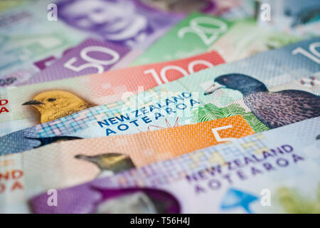 Pile of New Zealand currency laying flat on table - Stock Photo