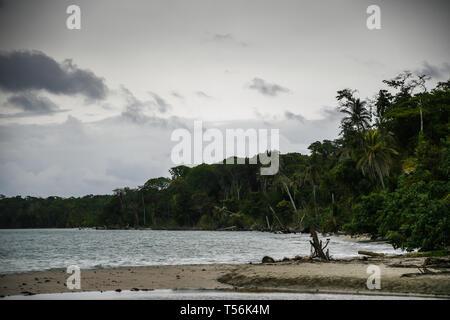 Costa Rica national park - Stock Photo
