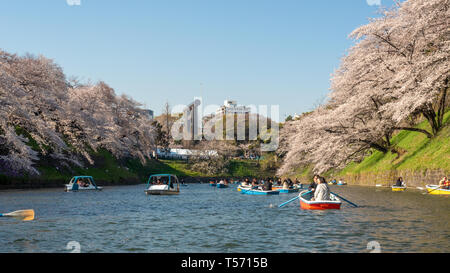 Chiyoda, Tokyo / Japan - April 04 2019: Beautiful lake in Chidorigafuchi, surrounding the Imperial Palace, and with hundreds of sakura trees, very nic - Stock Photo