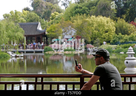 Los Angeles, USA. 21st Apr, 2019. A man visits the Chinese garden Liu Fang Yuan in the Huntington Library, Art Collections and Botanical Gardens in Los Angeles, the United States, April 21, 2019. Inspired by Chinese gardens of Suzhou, a Chinese city renowned for its ancient gardens, Liu Fang Yuan, or the Garden of Flowing Fragrance, is one of the largest Chinese-style gardens overseas. The word 'liu fang', or 'flowing fragrance', refers to the scent of flowers and trees, including the pine, lotus, plum, and other plants found here. Credit: Li Ying/Xinhua/Alamy Live News