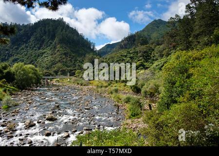 Karangahake Gorge Recreation path on the Ohinemuri River, near Waihi, Bay of Plenty, North Island, New Zealand - Stock Photo