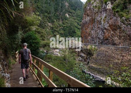 Hiker walking along Karangahake Gorge Recreation path on the Ohinemuri River, near Waihi, Bay of Plenty, North Island, New Zealand - Stock Photo