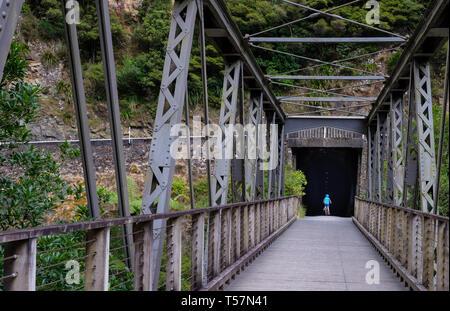 Karangahake Gorge Recreation path and rail tunnel  on the Ohinemuri River, near Waihi, Bay of Plenty, North Island, New Zealand - Stock Photo