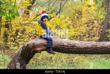 A little boy clambers, balances and sits on a fallen tree trunk, dressed in warm clothes and a hat with a punpon and shows his tongue - Stock Photo