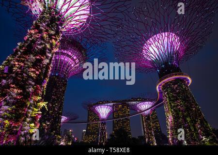 Supertree Grove and skyway at Singapor Marina Garden