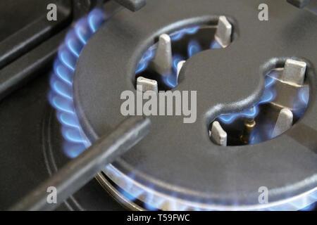 Burning blue flame gas burners cooktop closeup - Stock Photo