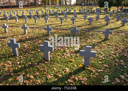 many identical gray crosses in polish military cemetery. autumn and sunset of life. struggle for congregation and independence of the motherland - Stock Photo