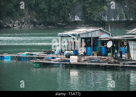 floating fish farm in ha long bay vietnam. production of fish and shellfish in the sea. - Stock Photo