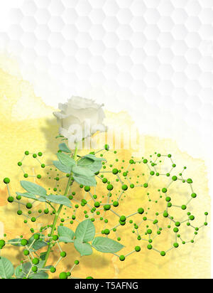 Photomontage of white rose with long stem wrapped in a structure of molecules with green spheres on a yellow watercolor background on a white hexagons - Stock Photo