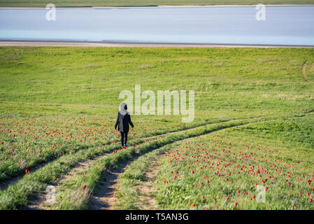 Back view young female hiker in spring steppe - Stock Photo