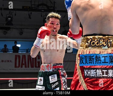 Tokyo, Japan. 18th Apr, 2019. Yuta Saito (JPN) Boxing : Yuta Saito of Japan during the third round of the Japanese bantamweight title bout at Korakuen Hall in Tokyo, Japan . Credit: Hiroaki Yamaguchi/AFLO/Alamy Live News - Stock Photo