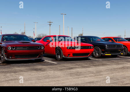 Noblesville - Circa April 2019: Dodge Challengers on display at a Chrysler dealership. The subsidiaries of FCA are Chrysler, Dodge, Jeep, and Ram I - Stock Photo