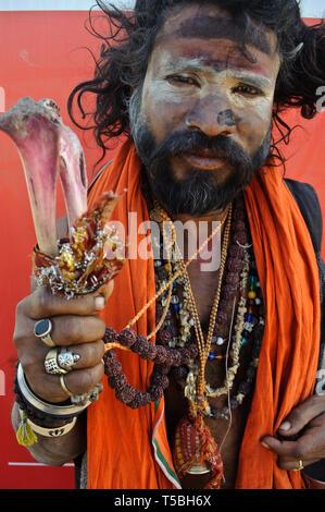Hindu ascetic (