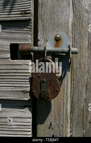 Close up of a bolt and padlock on the weathered wood of an old shed, UK - Stock Photo