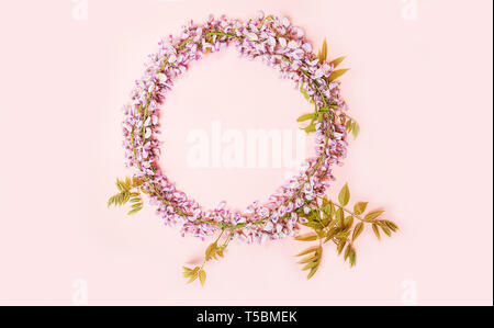 Circle frame of beautiful wisteria flowers branch with blossoms buds on pink background. - Stock Photo