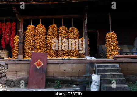 Corn stored for drying in Chinese countryside - Stock Photo