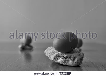Some eggs placed on stones. Still life composition in black and white. Close up on an egg with gradual gradient towards the background - Stock Photo