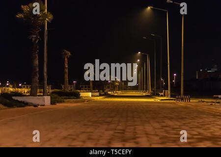 a night shoot from coastal road - palm trees and city lights. photo has taken at izmir/turkey. - Stock Photo