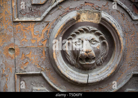 Wooden lion door. Lions gaze from weathered wooden door for graphic and web design, for website or mobile app. - Stock Photo