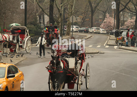 Horse drawn carriage in Central Park, New York, USA - Stock Photo