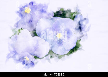 close-up of beautiful blue pansies in watercolors - Stock Photo