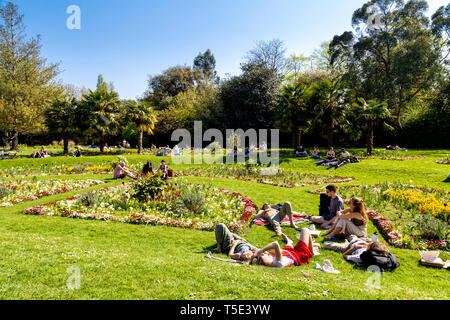 21st April 2019 - People sitting in the sun during Bank Holiday heatwave in Victoria Park, London, UK - Stock Photo
