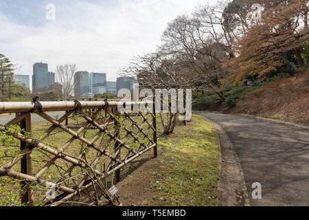 When you decide to visit the Imperial Palace in Tokyo be ready to see only the outside gardens. There is no option to see inside the palace. - Stock Photo