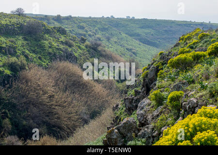 Israel, Golan Heights, Gamla waterfall Nature reserve. - Stock Photo