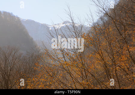 Landscape panorama with forest, mountains and lake.Azerbaijan.Caucasus - Stock Photo