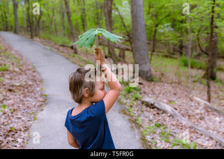 Young girl holding a big leaf in the forest - Stock Photo