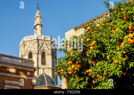 Spain, El Miguelet Tower, Valencia Cathedral Bell Tower, Valencia Oranges, Spain Europe - Stock Photo