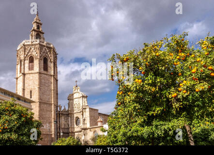 Spain, El Miguelet Tower, Valencia Cathedral Bell Tower from Plaza de la Reina Valencia oranges tree, Spain Europe - Stock Photo