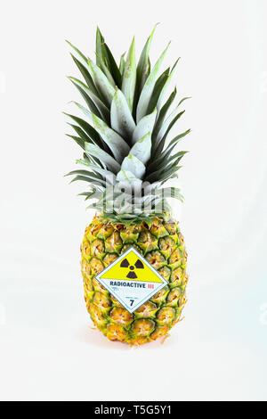 Pineapple with radioactive symbol - isolated on a white background. - Stock Photo
