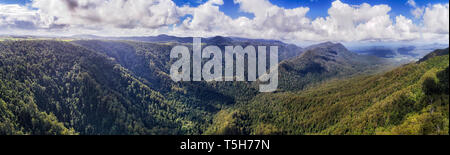 Green valley covered by lush tick woods of rainforest in Dorrigo national park between steep ranges of mountains in elevated wide panorama. - Stock Photo