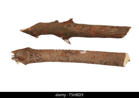 Dry branches Twigs isolated on white background, firewood, prepared for heating the house. Gathering fire wood for winter or bonfire. High resolution  - Stock Photo