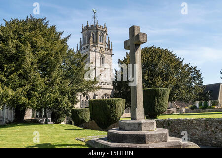 The church of St Andrew, Colyton, Devon. with memorial cross and clipped yew tress in the garden. - Stock Photo
