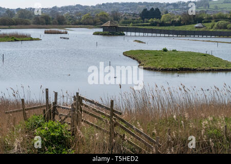 Seaton wetlands, sitting beside the River Axe in the Axe valley, Devon, England, UK - Stock Photo